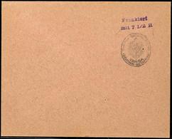 """Vorausfrankatur Dienstsiegel """"KAISERL. DEUTSCHES POSTAMT TANGA"""", L2 """"Frankiert / Mit 7 1/2 H."""" Violett, Großformat, Unge - Colony: German East Africa"""