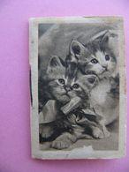 Calendrier De Poche 1942 Librairie Gambier Tours 37 - Kalender