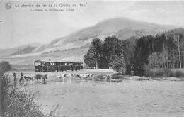 BELGIQUE   -   HAN-sur-LESSE  -  Le Chemin De Fer De La Grotte De Han  -  La Drève De Marronniers D'Inde - Rochefort