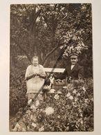 Photo Vintage. Original. Animaux. Chien. Une Femme Dans Le Jardin épluchant Des Pommes De Terre. Lettonie D'avant-guerre - Objets