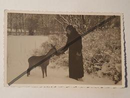 Photo Vintage. Original. Animaux. La Jeune Fille Nourrit Les Chevreuils. Lettonie D'avant-guerre - Objets