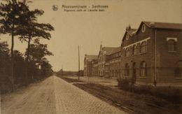 Zandhoven - Santhoven // Algemeen Zicht En Liersche Baan 19?? - Zandhoven