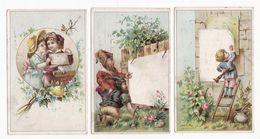 Chromo  CHICOREE MAIRESSE    Lot De 3    Enfants, Fleurs, Lutins     11.1 X 7 Cm - Trade Cards