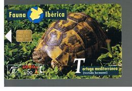 SPAGNA (SPAIN) - TELEFONICA  (CHIP) -  FAUNA IBERICA:  TESTUDO HERMANNI         - USED - RIF. 10009 - Tartarughe