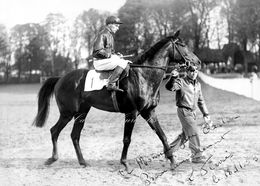 Jockey Sur Son Cheval - Dédicace 1953  - Superbe PHOTOGRAPHIE 15x21 Cms (6x8 Inch) - Reproductions