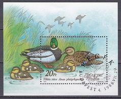 Tr_ Ungarn 1988 - Mi.Nr. Block 199 A - Gestempelt Used - Tiere Animals Vögel Birds Enten Ducks - Canards