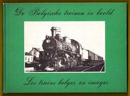 DE BELGISCHE TREINEN IN 158 OUDE BEELDEN * LES TRAINS BELGES EN 158 IMAGES ANCIENNES 1979 TRAIN TREIN NMBS SNCB Z311 - Trains