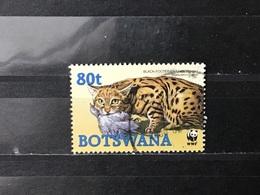Botswana - WWF - Zwartvoetkat (80) 2005 - Botswana (1966-...)