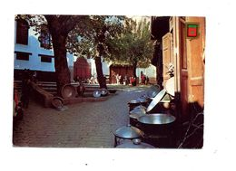 Carte  Fes Place  Cachet Sur Arbre - Fez