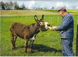 CPM SAIT JEAN FROIDMENTEL L'agriculteur Et Son âne  La Carte Au Bistro - Sonstige Gemeinden