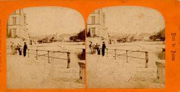 Stereo, A.Braun, Vues Suisse, Dos Élephant Blanc, Expo 1900, S.I.P.. - Visionneuses Stéréoscopiques