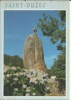 ( PLEUMEUR BODOU )( 22 COTES DU NORD )( MEGALITHES )  LE MENHIR DE SAINT DUZEC - Pleumeur-Bodou