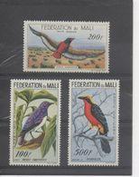 MALI - Faune - Oiseaux - Merle Améthiste, Aigle Bateleur, Gonolek - - Mali (1959-...)