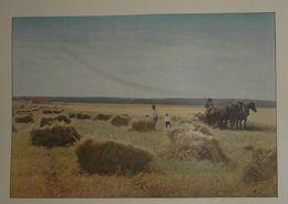 Canadian Pacific Railway. La Moisson Au Manitoba. Photogravure Fin XIXe. - Stampe & Incisioni