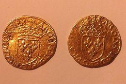 Deux Treizains Argent Doré Datés De 1565 Charles IX, Sols Parisis - 987-1789 Monedas De La Realeza