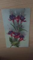 CP  - Belles Fleurs - Flores