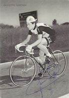 CARTE CYCLISME GIUSEPPE SARONNI SIGNEE TEAM BOTTECCHIA - SCIC 1979 ( DECOUPE, FORMAT 10 X 14 - Ciclismo