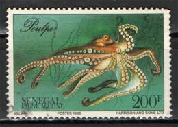 SENEGAL - 1987 - FAUNA MARINA: POLIPO - MARINE LIFE  - USATO - Senegal (1960-...)