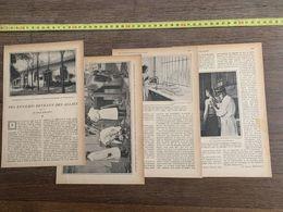 1918 JST ENNEMIS DEVENUS DES ALLIES HENRI BOUQUET VACCINS LABORATOIRE VAL DE GRACE CULTURES MICROBIENNES - Collections