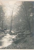 Snapshot Argentique Cours D'eau à Déterminer Bois Arbres Rochers Nature Feuilles - Luoghi