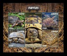 Liberia 2020 Mih. 7715/18 Fauna. Turtles MNH ** - Liberia