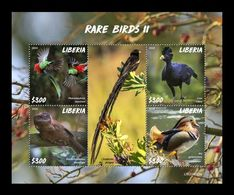 Liberia 2020 Mih. 7739/42 Fauna. Rare Birds II MNH ** - Liberia
