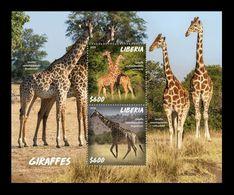 Liberia 2020 Mih. 7767/68 (Bl.843) Fauna. Giraffes MNH ** - Liberia