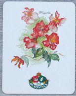Sous-bock DE KONINCK Weigelia (fleur) Bierdeckel Bierviltje Coaster (CX) - Portavasos