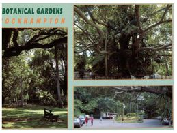 (B 18) Australia - QLD - Rockhamton Botanical Garden - Jardin - Árboles