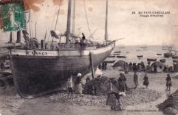 35 - Ille Et Vilaine - CANCALE - Au Pays Cancalais - Triage D Huitres - Cancale