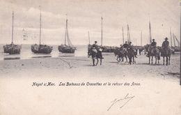 620 Heyst Sur Mer Les Bateaux De Crevettes Et Le Retour Des Anes - Heist