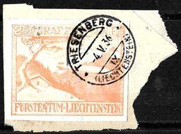 539 -  LIECHTENSTEIN - 1936 - ZEPPELIN - LABEL, STAMP, BOGUS... - TO CHECK AND IDENTIFY - Sellos