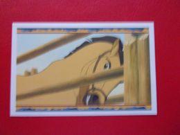 PANINI SPIRIT STALLION OF THE CIMARRON N°46  L'étalon Des Plaines Cow Boy Indien Cheval Horse Pferd Caballo Cavallo - Panini