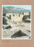 Bulgaria - Veliko Tarnovo - Fortress Tsarevets - Remains Of The Wall - Printed 1974 - Bulgarie