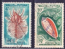 Wallis Et Futuna 1962 Coquillages Mi 196, 197 Oblitéré O - Used Stamps