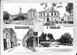 7648 A - 58 - NIEVRE - SAINT SAULGE - Multivues - Autres Communes
