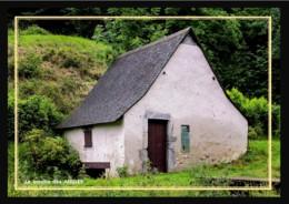 66  Les  ANGLES ... Le Moulin - France