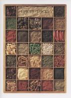 Les épices, Spices, Gewürze, Le Spezie (cp Vierge Nouvelles Images) - Heilpflanzen