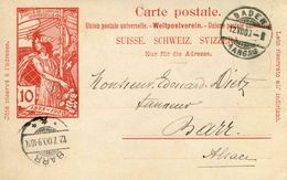 Entier Postal De 1900 Sur CP Oblitéré 12 VII 1900 - Interi Postali