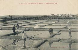 Salins Marais Salants Le Pouliguen  Recolte Du Sel . Salt . Sal. - Mineral