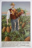 Métier - Planteur D'Ananas à HONOLULU - Plantation Fruits Ananas Pineapple - Carte Postale Ancienne CPA WAHIAWA HAWAII - Farmers