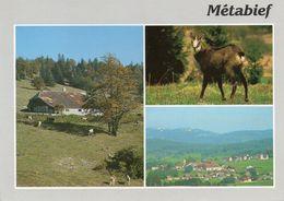 METABIEF MONT D'OR - Multivues - Autres Communes