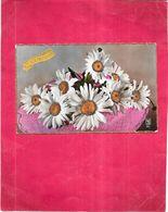 CARTE COULEUR FETE -  SAINTE CATHERINE - Bouquet De Marguerites - GIR - - Sainte-Catherine