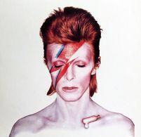 Composition Artistique Pour Une Publicité DAVID BOWIE Ziggy Stardust Artistic Composition For An Advertisement - Singers & Musicians