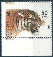 B7976 Russia Rossija Fauna Animal Tiger (50 Rubel) Organization WWF ERROR (1 Stamp) - Felini
