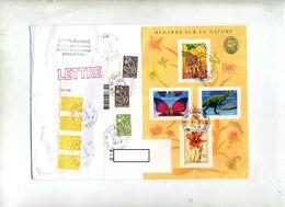 Lettre  Cachet Epinal Annexe GA Sur Bloc Nature + Lamouche - Marcophilie (Lettres)