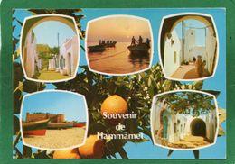 CPM - TUNISIE - HAMMAMET - MULTIVUE  CPM - Tunesië