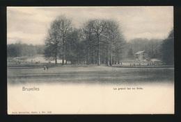 BRUXELLES  IXELLES  LE GRAND LAC AU BOIS - Ixelles - Elsene