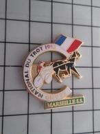 316c Pin's Pins / Beau Et Rare / THEME : ANIMAUX / CHEVAL COURSE GRAND NATIONAL DU TROT 92 MARSEILLE SS Et Findus Après? - Dieren