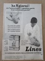 - ADVERTISING PUBBLICITA'  PANNOLINI LINES PACCO AZZURRO/ ARANCIO - 1975 -  OTTIMO - Unclassified